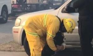 MC Firefighters save Pets during fire