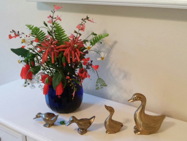 The Shrub Queen: Get your Ducks in a Row