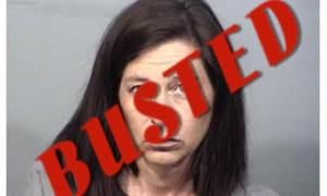 Former Brevard Public School Bookkeeper arrested