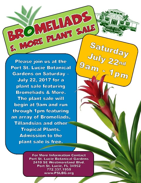 Bromeliads & More Plant Sale