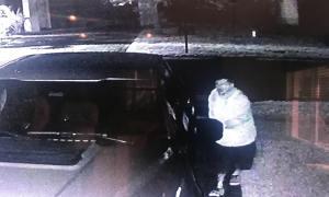 Multiple Auto Burglaries