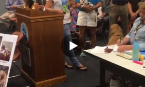 Local veterinarian presents cases of sick dogs to Stuart City Commission