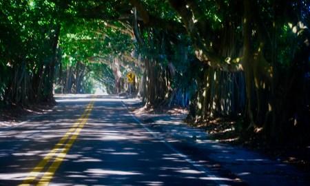 Florida Back Roads: Sunday Drive from Jupiter to Jensen Beach