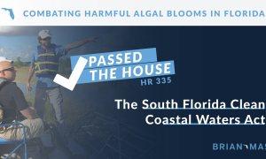 Combat Harmful Algal Blooms In Florida