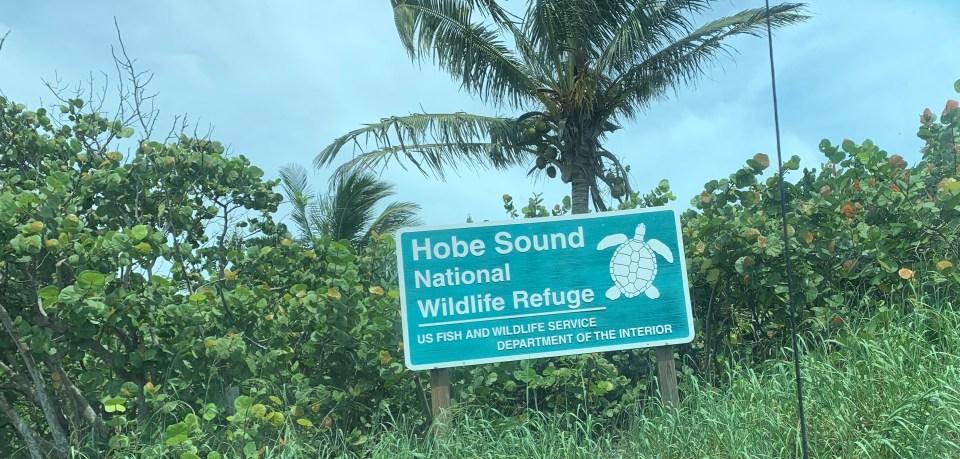Videos from Sept 5 2015 Hobe Sound National Sanctuary, Sandscript Park