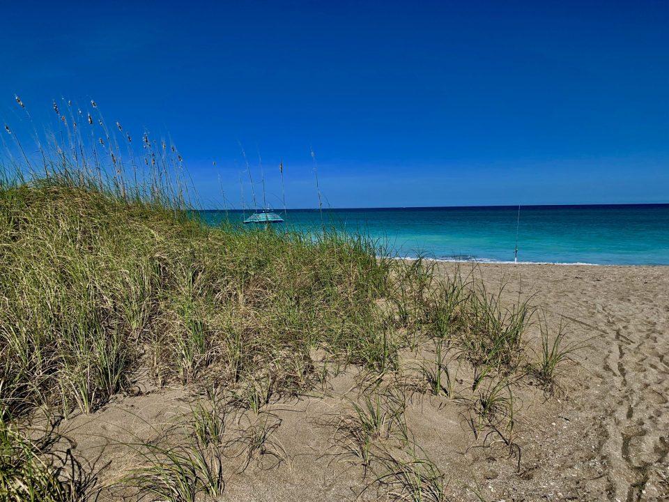 Blue Heron Beach