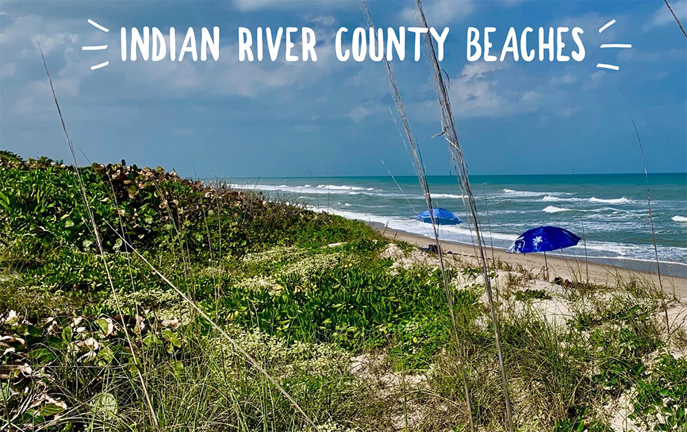 Indian River County Beaches