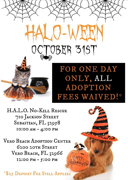 HALO-Ween Adoption Event