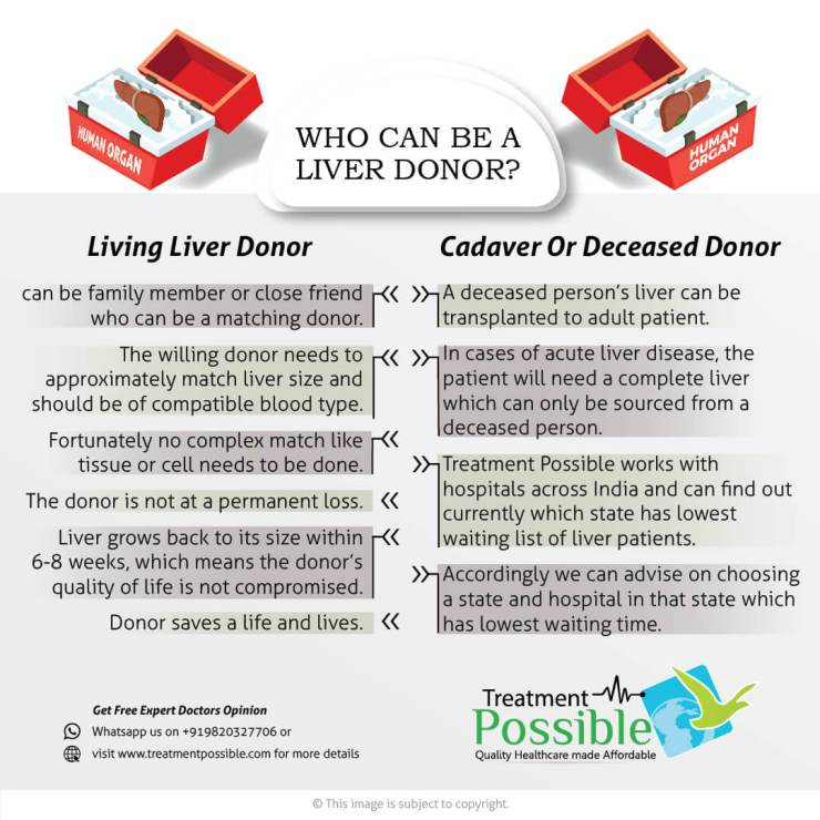 A Liver Donor can be a family member or deceased donor. If the donor is a living donor then the blood type and size should be same.