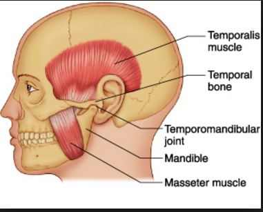 The temporomandibular joint syndrome can also contribute to irritation and swelling in the middle ear