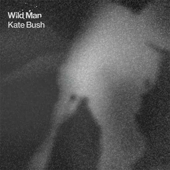 Kate Bush - 'Wild Man', artwork