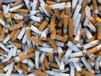 cigarette butts by freedigitalphotos.net Bill Longshaw