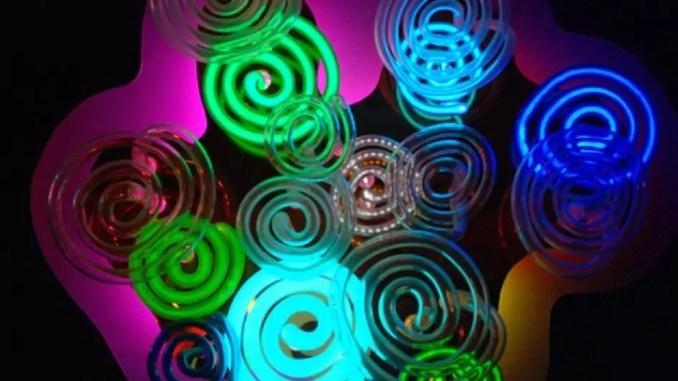 Linda Sue Price Focus on the Light