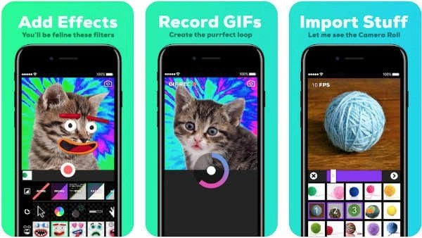 Giphy app