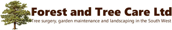 Forest and Tree Care