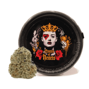 HYBRID QUEEN OF HEARTS BLACK CHERRY SODA (4 GRAMS)