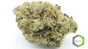 Private Reserve Grease Monkey (Indica) Dominant (Hybrid)- 70% Indica/ 30% Sativa THC:25.8%
