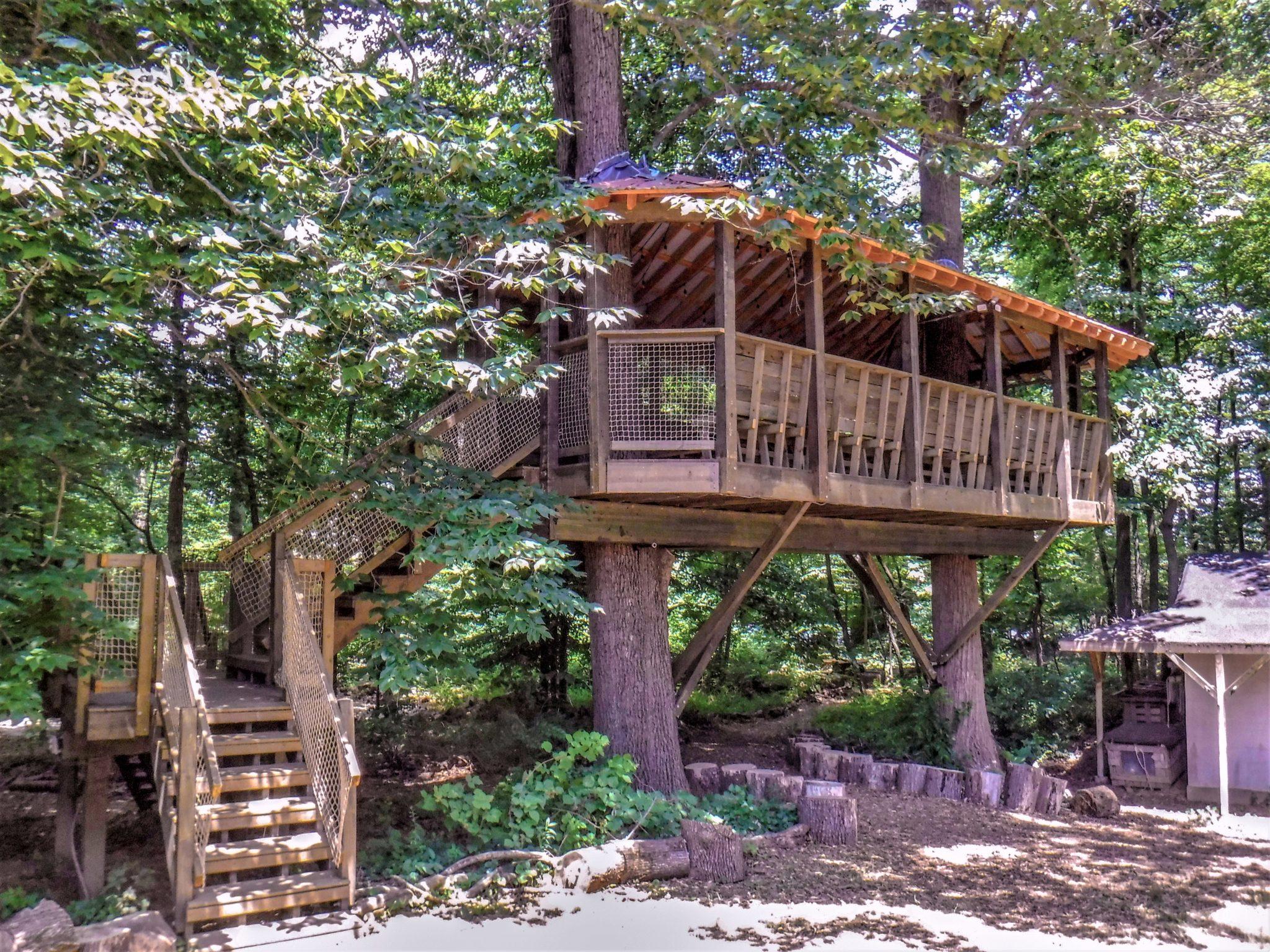 Pavilion_Treehouse