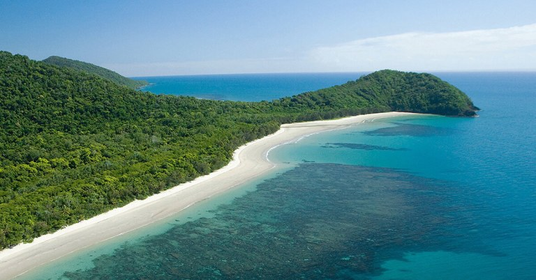 Cape Tribulation Discovery Tour