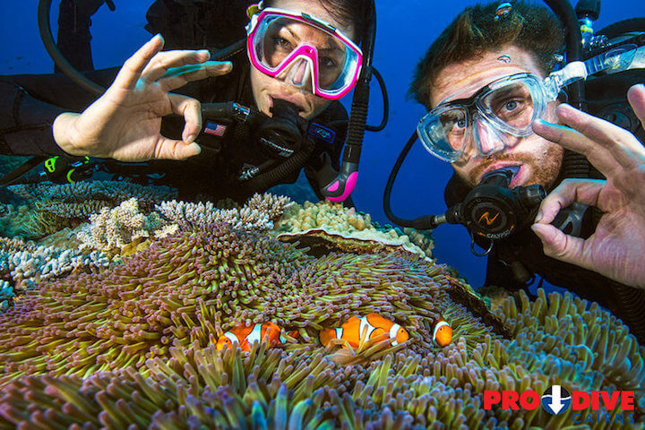 Pro Dive Cairns Learn to Dive 5 day course