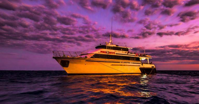 Pro Dive Cairns Liveaboard
