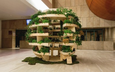 The Growroom – Let us build one for you