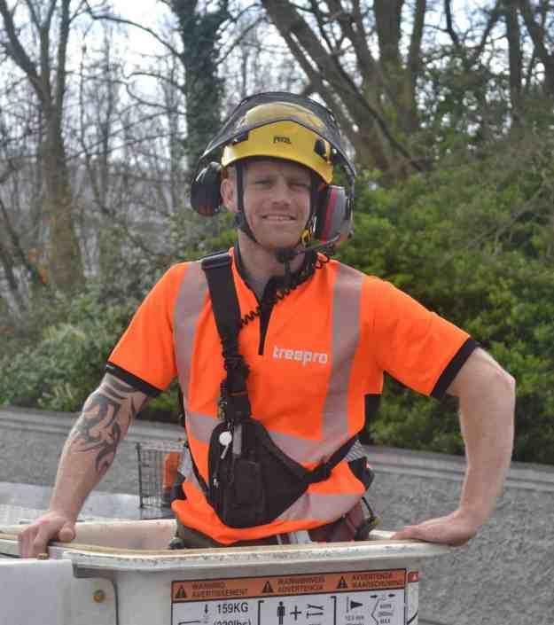 tree surgeon jobs ireland,
