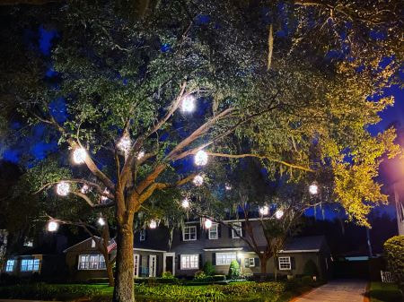 lighting all year round home business