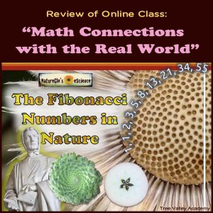 "Review of Online Class: ""Math Connections with the Real World"". Explores how math like Fibonacci Numbers and the Golden Ratio is used in nature, architecture, science, literature, music, art, history, etc."