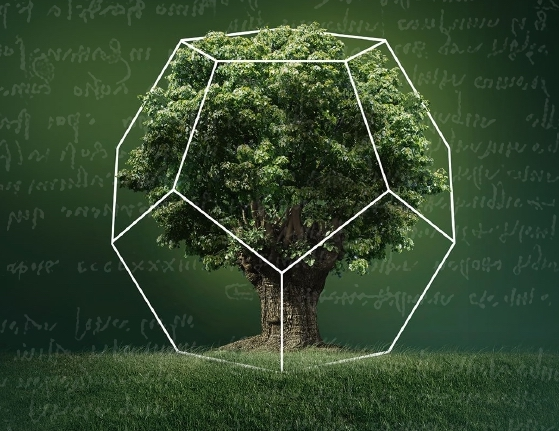 Aboca: La Botanica di Leonardo
