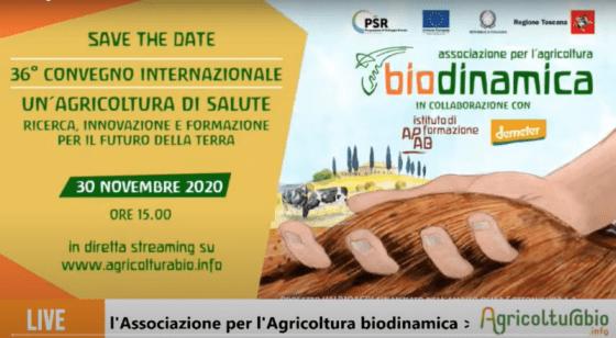Agricoltura biodinamica: campione sostenibile dalle proprietà salutistiche