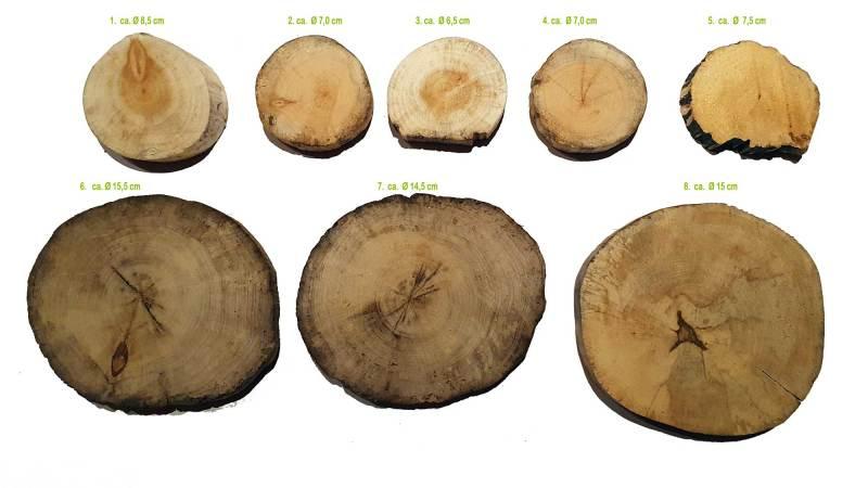 treibholzscheiben-rund-8cm-15cm
