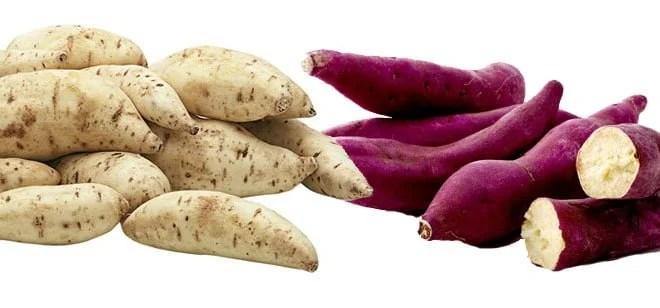 Batata-doce roxa ou branca qual a melhor