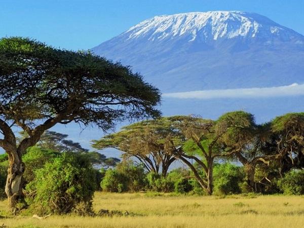 trek mont meru et kilimandjaro avec guide