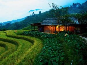 How to have a wonderful homestay in Sapa