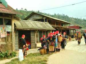 Sapa trekking tour price: the necessary expenses travelers must know