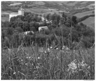 Il Castello di Pellegriono Parmense