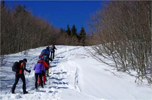 salita al monte bue _ Escursione Trekking Taro Ceno