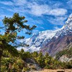 Trekking in Nepal with Trek Nepal Himalayas