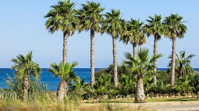 cheap cyprus luxury holiday