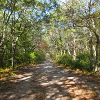 Snail Road Trail