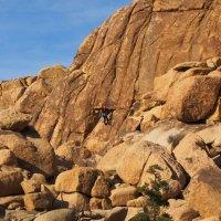 Rock Climber in Joshua Tree