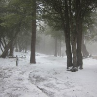 Snowy & Empty Campground