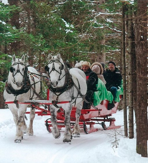 Private horse drawn sleigh ride - Mont Tremblant