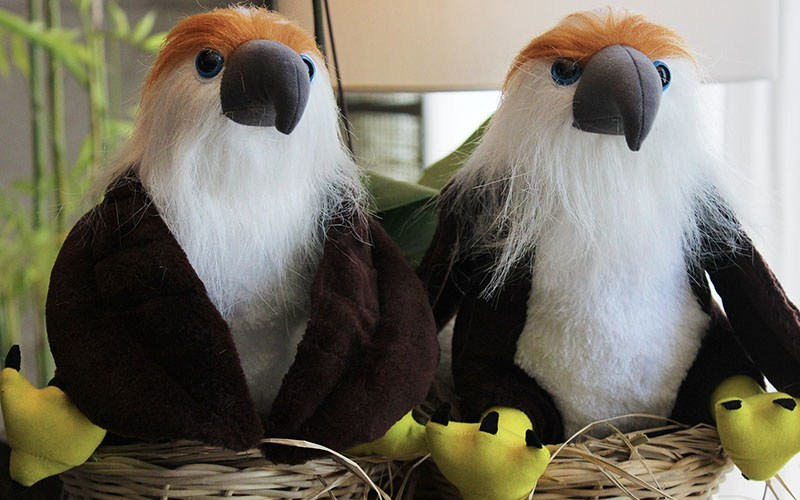 Adopt an Eagle Toy
