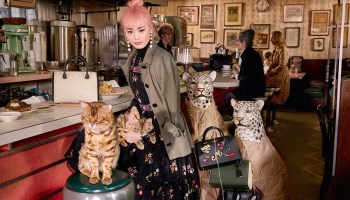 Kate Spade New York Fall 17 Ad Campaign (6)