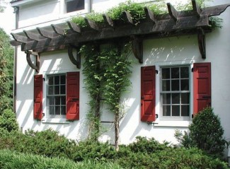 Beautiful Facades With Vines And Climbers 14
