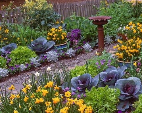 Smart Garden Design Ideas For Front Your House 25