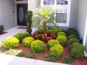 Cute Palm Gardening Ideas For Front Yard 15