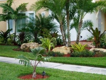 Cute Palm Gardening Ideas For Front Yard 31